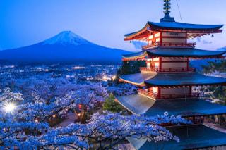 JAPANブランド育成支援等事業